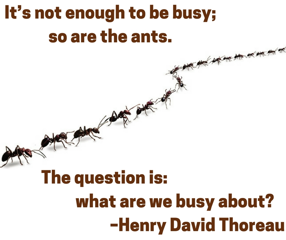 It's not enough to be busy; so are the ants. The question is: what are we busy about? –Henry David Thoreau