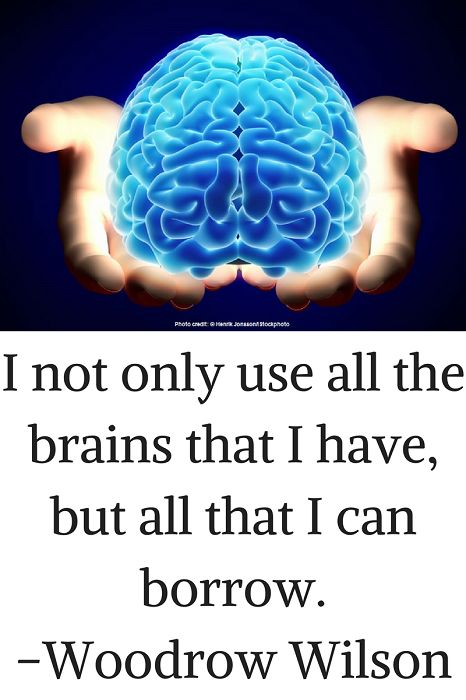 I not only use all the brains that I have, but all that I can borrow. –Woodrow Wilson