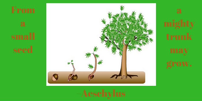 From a small seed a mighty trunk may grow. –Aeschylus